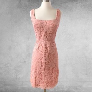 JILL STUART Lace Overlay Sheath Dress